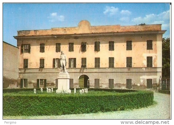 ALESSANDRIA - Marengo, monumento a Napoleone