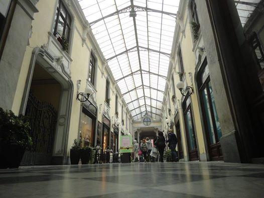 Galleria Guerci - 2014