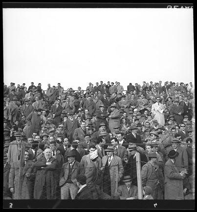 Gli spalti del Moccagatta - anni 60 (fondo Sartorio - Fototeca Civica)