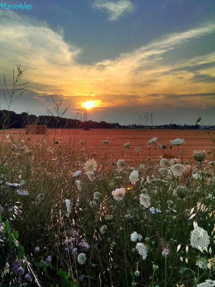 """""""Il giorno si inchina  e il cielo si accoccola...."""" Cabanette, estate 2013"""