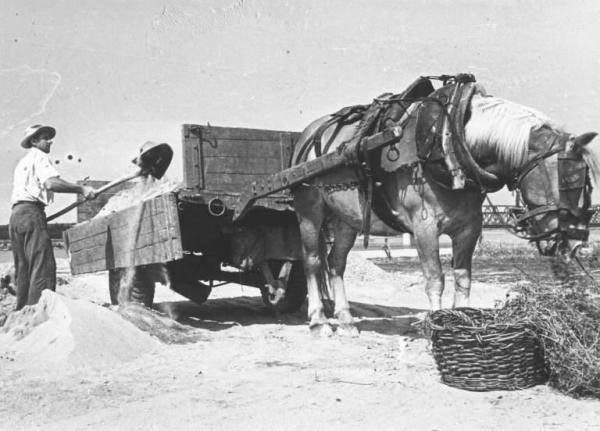 """I LAVORATORI DEL FIUME: i Renaioli Una volta, fino agli anni '50, molti fiumi erano fonte di lavoro e sostentamento per tante famiglie: sabbia, sassi, erano una merce richiesta per imbrecciare strade e per costruire case. Non era un danno per i fiumi, perchè questi prelievi avvenivano soprattutto dopo le """"fiumane"""",che trasportavano a valle molto materiale e i renaioli contribuivano semmai a mantenere sgombro il corso dell'acqua.... Il guaio, per molti fiumi, cominciò negli anni '60 con la forte richiesta dell'edilizia e con l'impianto sciagurato di draghe che non aspettavano certo le fiumane ma scavavano tutto l'anno senza posa...."""