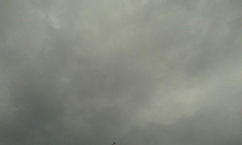 Il colore della nostra estate 2014: grigio, naturalmente.