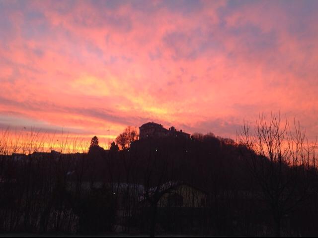 Pavone al tramonto