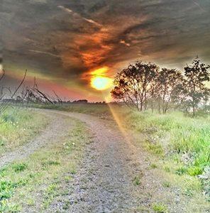 Via vecchia dei Bagliani, argine sul lungo Tanaro