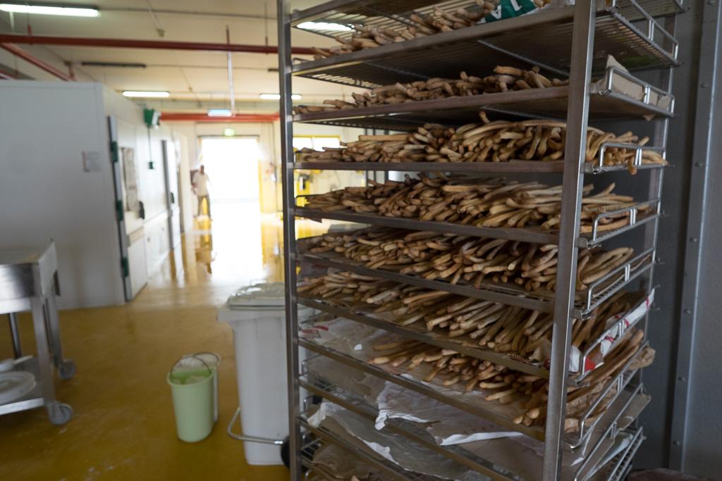 """L'area del forno dove vengono prodotti, grazie alla collaborazione con una cooperativa, gli alimenti che vengono poi venduti all'esterno del carcere (fra questi i grissini, le pagnotte e le grandi forme di pane venduti al supermercato con il marchio de """"Il pane quotidiano"""")"""