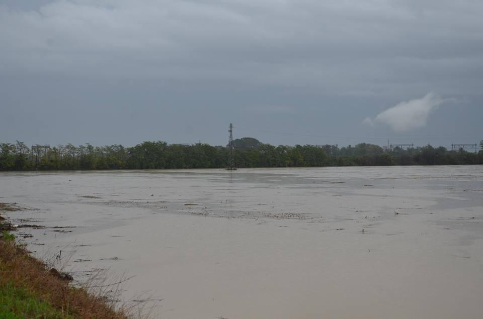 Aree Golenali fiume Bormida