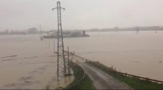 Alessandria zona Pista, lungo Bormida lato Casetta... Una distesa unica di acqua, che disastro...
