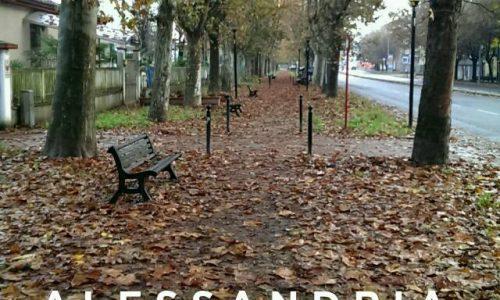 Alessandria – 18 Novembre 2014