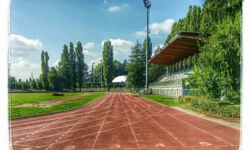 Il Campo Scuola di Alessandria