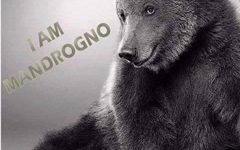 I AM MANDROGNO