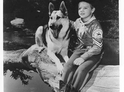 COME ERAVAMO….  Quanti di voi passavano interi pomeriggi a guardare questa serie di telefilm (Rin Tin Tin)?