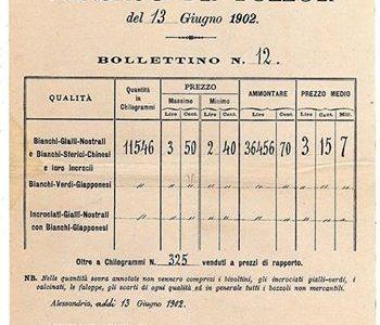 Bollettino dei prezzi dei bozzoli da seta – 13 Giugno 1902