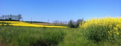 Panorama della campagna intorno a Masio.