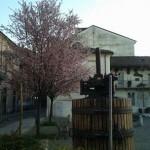Primavera in piazza Gamberina in Alessandria