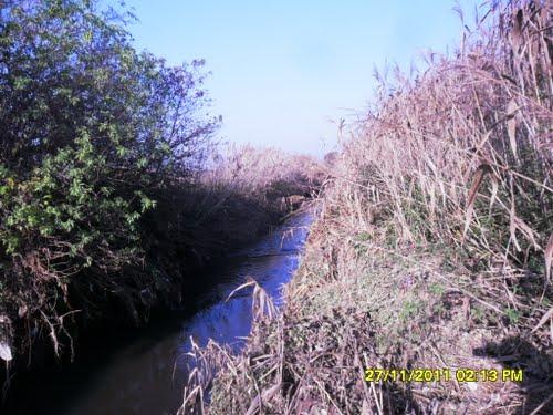 Ecco come si presenta oggi il fossato del Fontanone presso Marengo