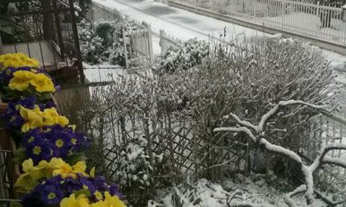 05 Marzo 2016 – Nevicata