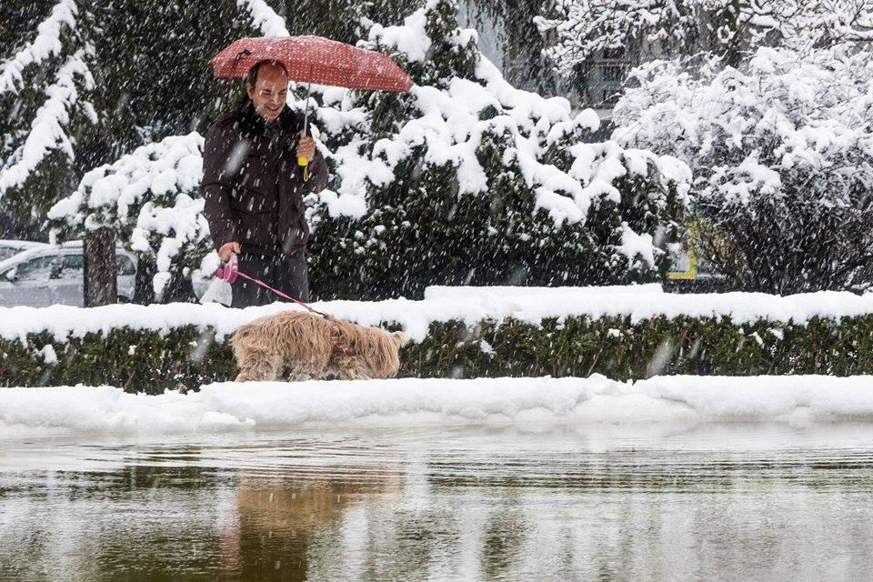 Nevicata del 5 marzo 2016 - foto Cristian Mighetti.