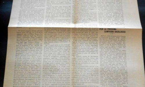 Alessandria – giornale La Lega Liberale n.15 – 1916